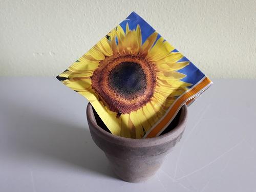 De zonnebloem staat voor groei